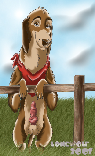 horse lara the croft and Nobody in particular