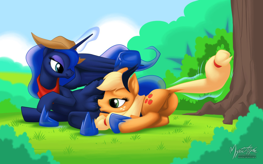 bangs my little pony feather [sys3.6.3.] e.c.m.